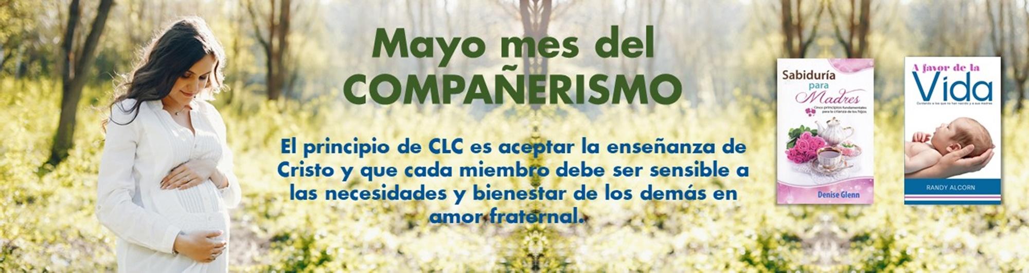 plantilla web mayo 2020 (1)